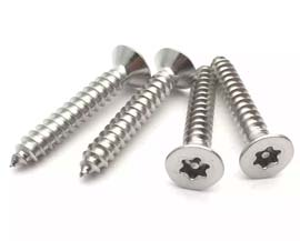 316 Stainless Steel Deck Screws