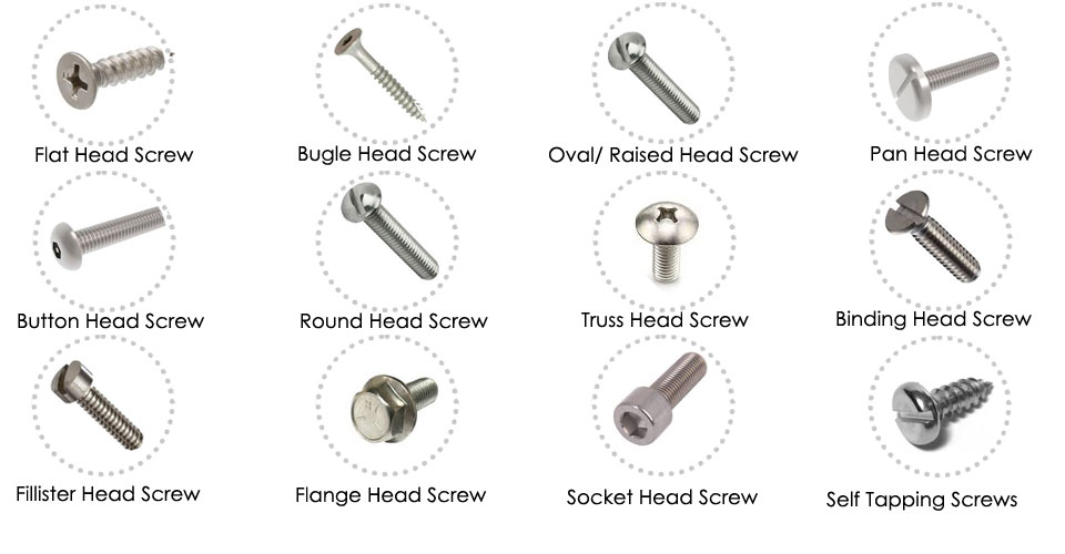 Stainless Steel 316L Screw Head Types